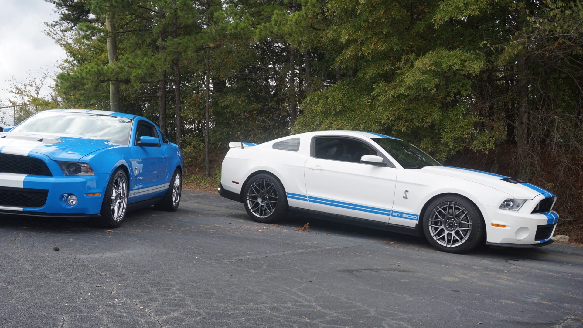 2012 SVTPP wheels | Ford Shelby GT500 Forum