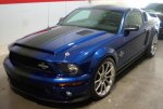 shelby_l_ss_blue_front_1.jpg