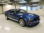 07 Shelby GT500