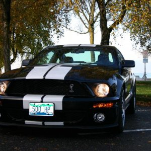 2007 Shelby 1