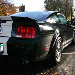 2007 Shelby 1 3