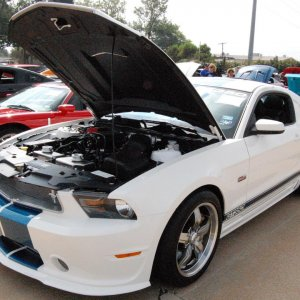 Mustang show North Texas 001