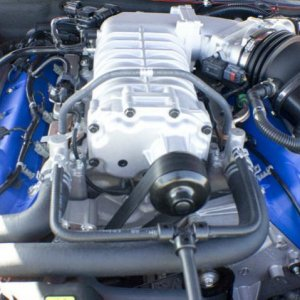 shelby engine2